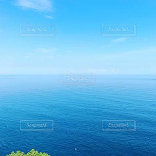 自然,風景,海,空,屋外,水面,葉