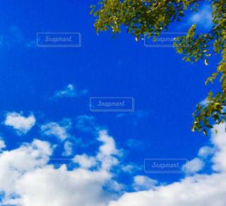 雲と青空の写真・画像素材[3010605]