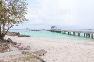 砂浜の写真・画像素材[3562555]