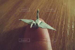 指先サイズの折り鶴の写真・画像素材[3694262]