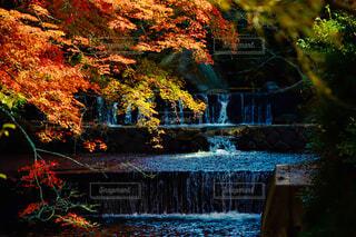 紅葉と小滝の写真・画像素材[3714923]