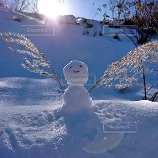 自然,冬,木,雪,屋外,太陽,手,山,笑顔,雪だるま,顔,遊び,手作り,すすき