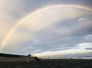 虹,愛犬,湘南の海