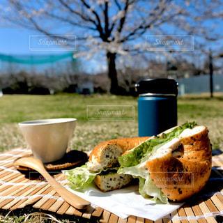 お花見ベーグル。桜を見ながらカフェ時間。の写真・画像素材[3052805]