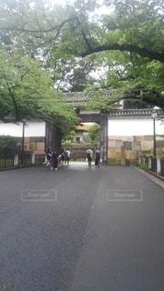 武道館への写真・画像素材[3338396]