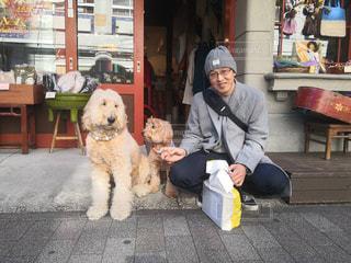 横浜中華街での犬の親子と私の写真・画像素材[3027564]