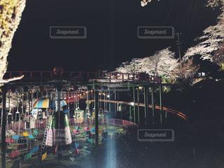 桜,夜,屋外,夜桜,遊園地,遊園地からの春