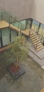 水に浮かぶ樹木の写真・画像素材[3033174]