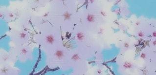 花のぼやけたイメージの写真・画像素材[3050337]