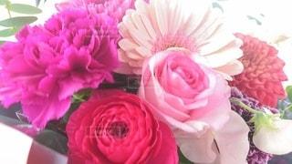 風景,花,ピンク,花束,バラ,景色,花びら,テーブル,装飾,草木,ブルーム