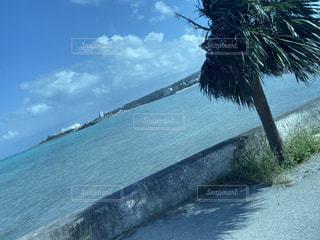 風景,海,砂浜