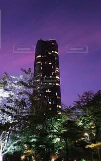 空,夜景,夜空,屋外,東京,タワー,樹木,高層ビル