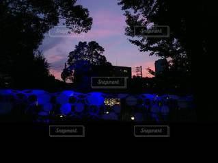 自然,空,夜,夜景,夜空,夕暮れ,シルエット,樹木