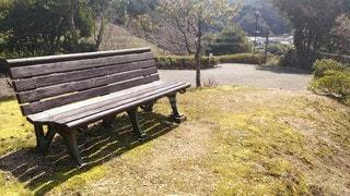 公園に座っている木製ベンチの写真・画像素材[3028655]