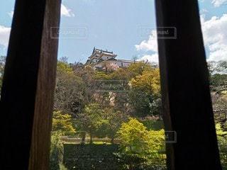 窓からの和歌山城の写真・画像素材[3077807]