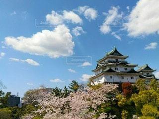 和歌山城と空の写真・画像素材[3077808]