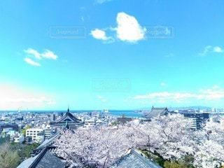 天守閣からの眺めの写真・画像素材[3077812]