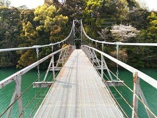 吊り橋の上の写真・画像素材[3096454]