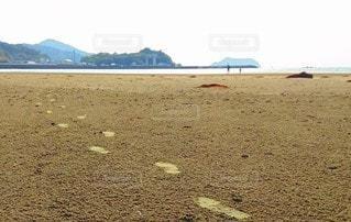 砂浜の足跡の写真・画像素材[3108584]