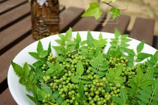 緑の植物を持つ食品のプレートの写真・画像素材[3037982]