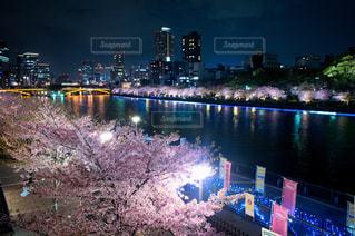 水域の隣にある都市の眺めの写真・画像素材[3041014]