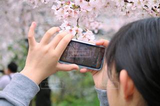 携帯電話を持っている人の写真・画像素材[3068200]