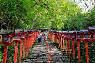 貴船神社の写真・画像素材[3155095]