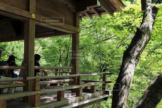 貴船神社の写真・画像素材[3155105]