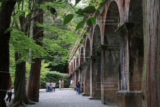 南禅寺水路閣の写真・画像素材[3186749]