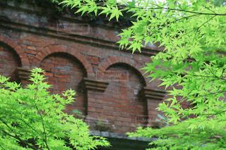 庭に緑の植物がある大きなレンガ造りの建物の写真・画像素材[3186750]