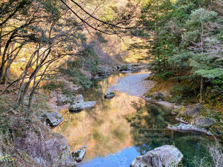自然,風景,紅葉,森林,屋外,湖,水,川,水面,山,反射,草,樹木,岩,草木,山腹