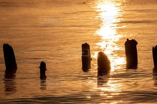 風景,冬,屋外,湖,朝日,綺麗,水面,景色,夜明け,美しい,朝陽,琵琶湖,湖面,景観,輝き,朝方,煌めき,杭,日出,ワンダフル