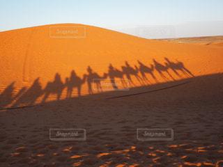 自然,風景,空,屋外,砂,夕暮れ,オレンジ,旅行,砂漠,ラクダ,砂丘,海外旅行,モロッコ,サハラ砂漠,サハラ