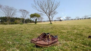 公園,靴,屋外,景色,草,樹木,スニーカー,履物