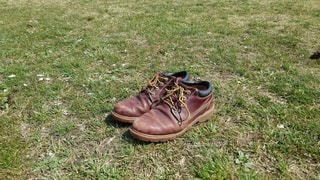 自然,公園,靴,景色,草,スニーカー,履物