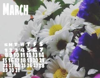 2020年3月カレンダーの写真・画像素材[3027779]