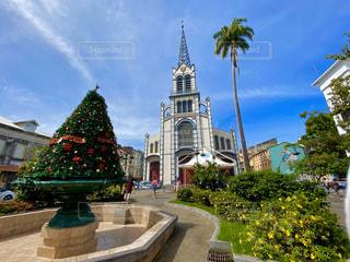 風景,空,建物,屋外,樹木,教会,クリスマス ツリー