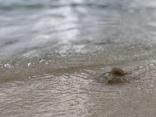 砂,ビーチ,砂浜,波打ち際,水面,地面