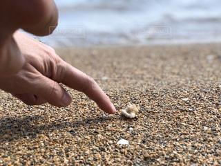 自然,海,砂,ビーチ,砂浜,手,岩,人,地面