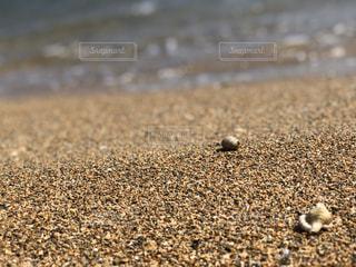 自然,砂,ビーチ,波打ち際,水面,岩,地面