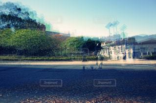 自然,空,公園,屋外,光,合成,光が丘公園
