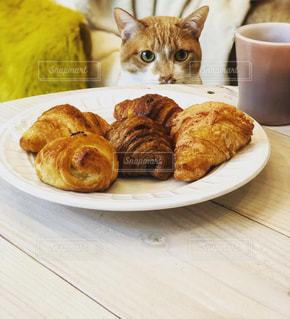 猫,食べ物,コーヒー,朝食,パン,テーブル,皿,クロワッサン,茶トラ