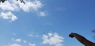 家族,空,屋外,雲,青,ピクニック,日中