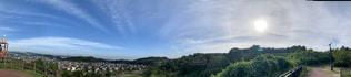 空,公園,青空,樹木,新緑,日中