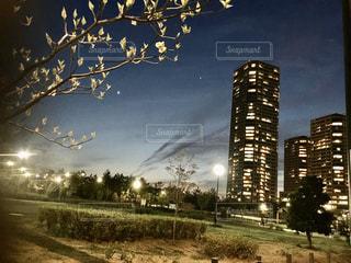 建物,夜,夜景,屋外,樹木,高層ビル