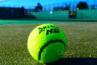 スポーツ,屋外,ボール,テニス