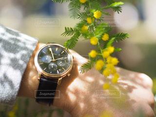 男性,春,腕時計,時計,プレゼント,ふわふわ,誕生日,記念日,ミモザ,ナチュラル,サラリーマン,お揃い,彼氏,草木,お父さん,父の日,おしゃれ