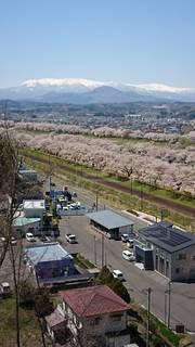 空,建物,桜,雪山,線路,雪景色,山,住宅,ランニング
