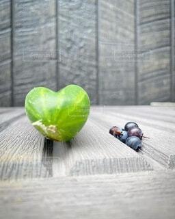 家庭菜園のハート型きゅうりの写真・画像素材[4670435]