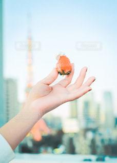 食べ物,東京タワー,青空,手,食べる,ホイップクリーム,イチゴ,物